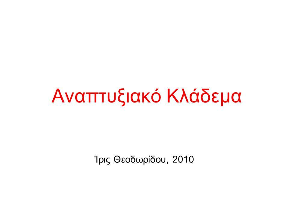 Aναπτυξιακό Κλάδεμα Ίρις Θεοδωρίδου, 2010
