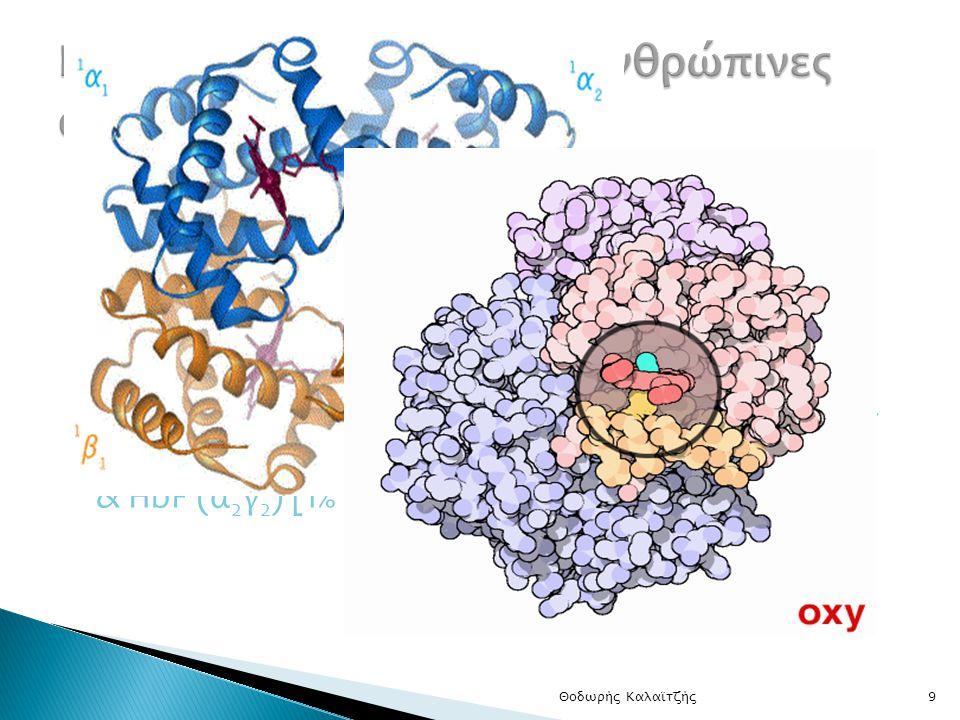 Γενετικές διαταραχές σε ανθρώπινες αιμοσφαιρίνες