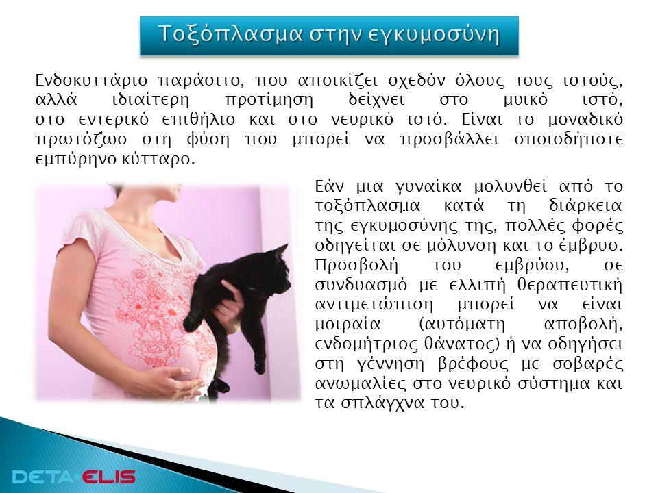 Τοξόπλασμα στην εγκυμοσύνη