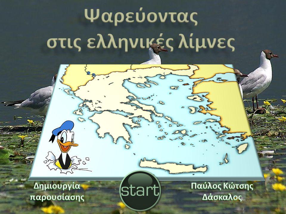 Ψαρεύοντας στις ελληνικές λίμνες