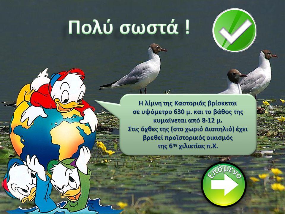 Πολύ σωστά ! Η λίμνη της Καστοριάς βρίσκεται
