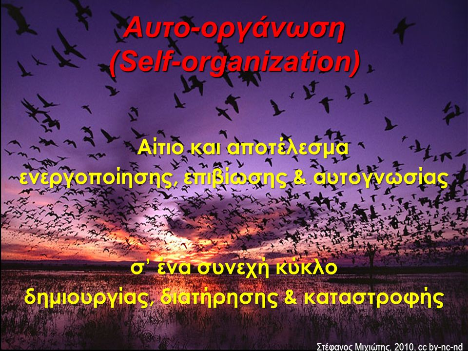 Αυτο-οργάνωση (Self-organization)