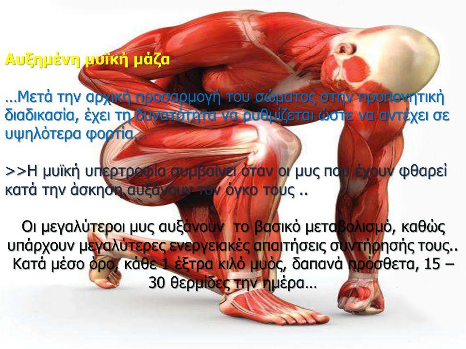 Αυξημένη μυϊκή μάζα