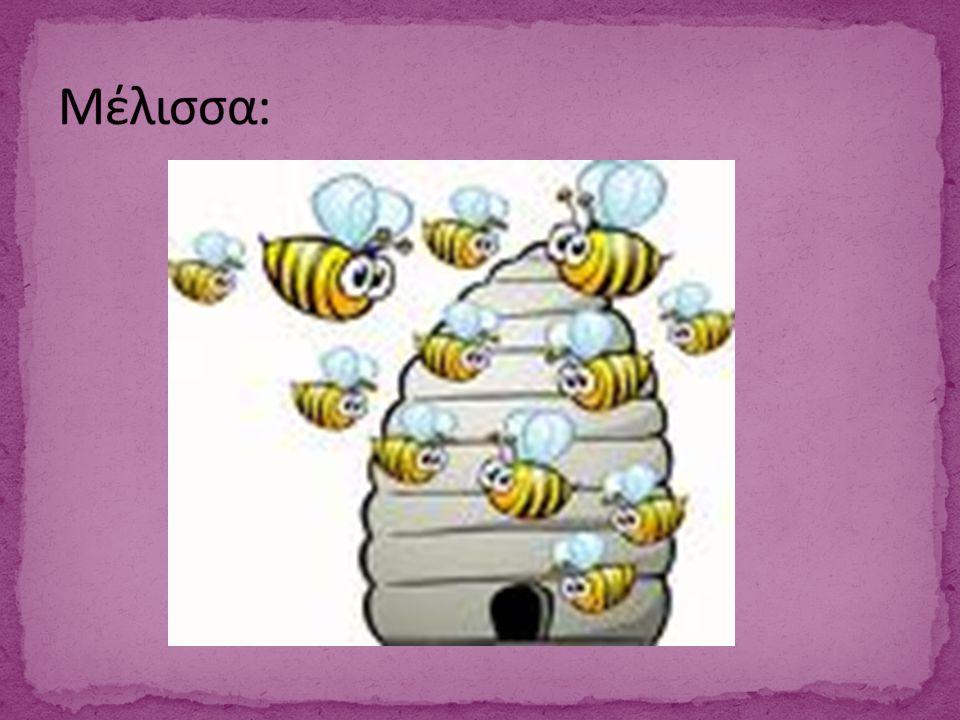Μέλισσα: