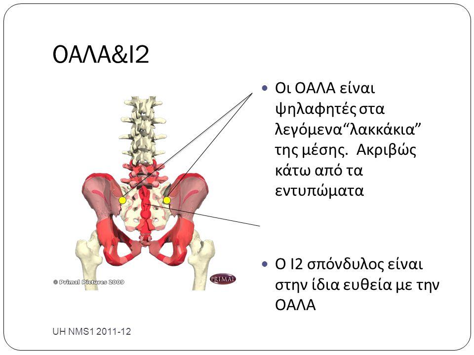 ΟΑΛΑ&Ι2 Οι ΟΑΛΑ είναι ψηλαφητές στα λεγόμενα λακκάκια της μέσης. Ακριβώς κάτω από τα εντυπώματα.
