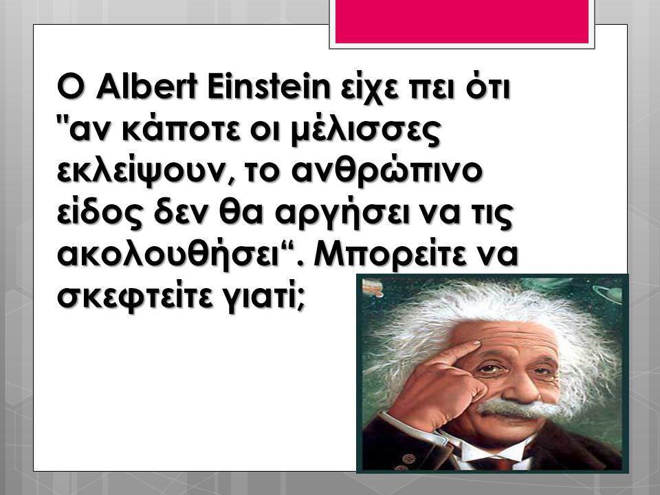 Ο Albert Einstein είχε πει ότι αν κάποτε οι μέλισσες εκλείψουν, το ανθρώπινο είδος δεν θα αργήσει να τις ακολουθήσει .
