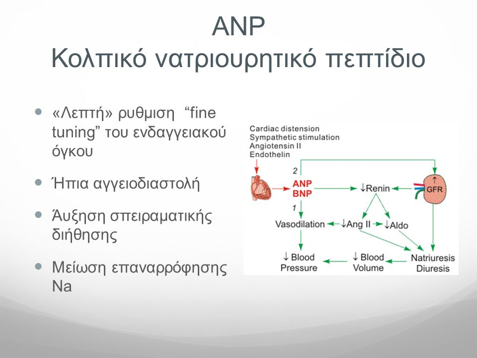 ΑΝP Κολπικό νατριουρητικό πεπτίδιο