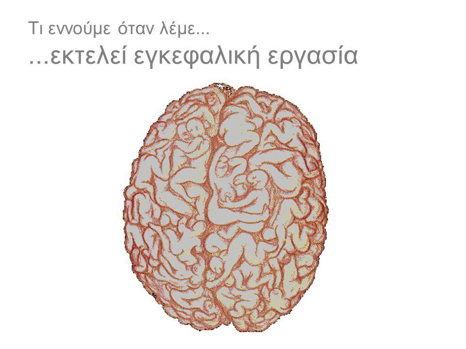 Τι εννούμε όταν λέμε... ...εκτελεί εγκεφαλική εργασία