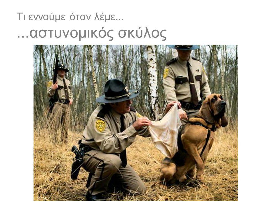 Τι εννούμε όταν λέμε... ...αστυνομικός σκύλος