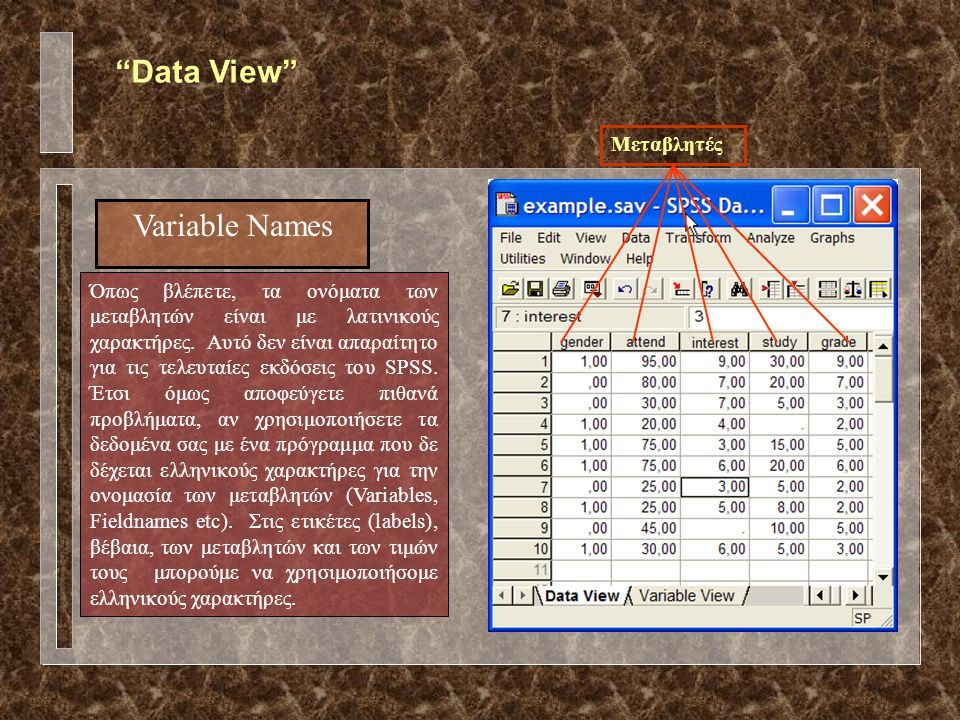Data View Variable Names Μεταβλητές