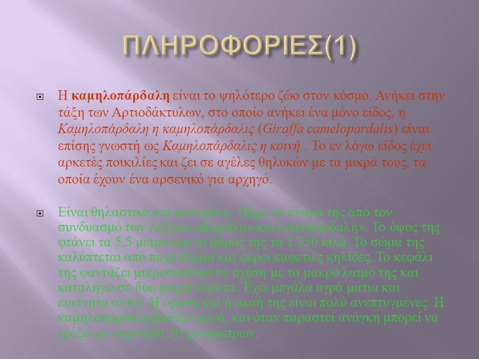 ΠΛΗΡΟΦΟΡΙΕΣ(1)