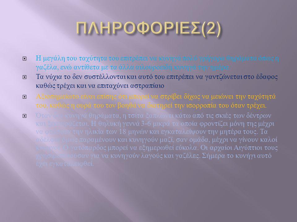 ΠΛΗΡΟΦΟΡΙΕΣ(2)