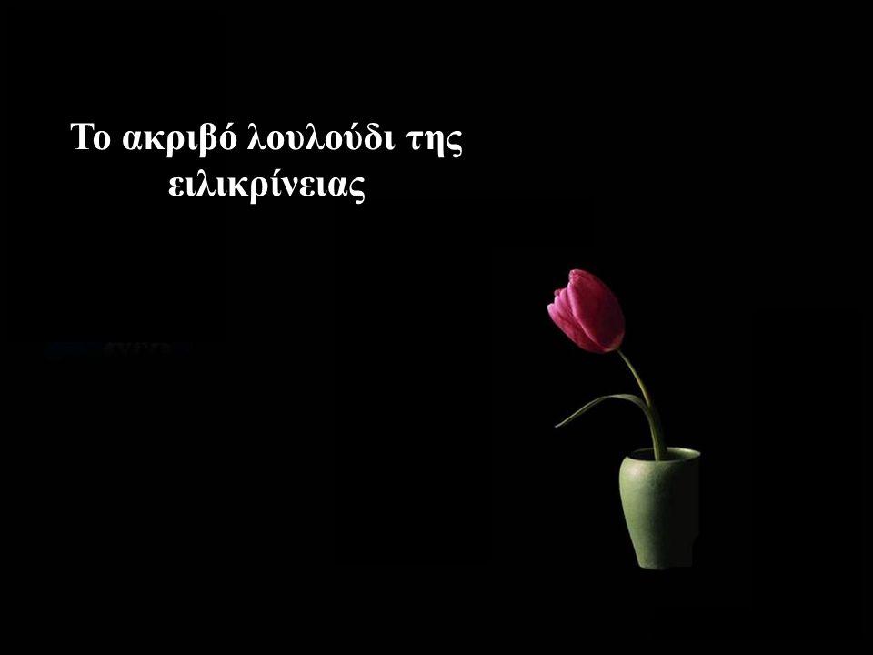 Το ακριβό λουλούδι της ειλικρίνειας