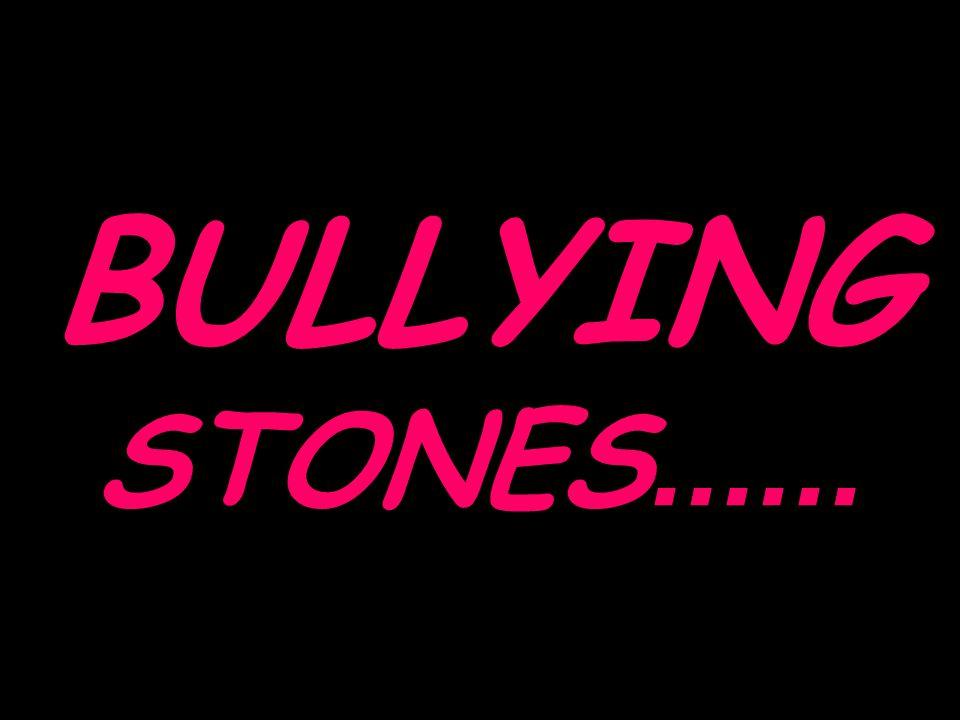 BULLYING STONES......