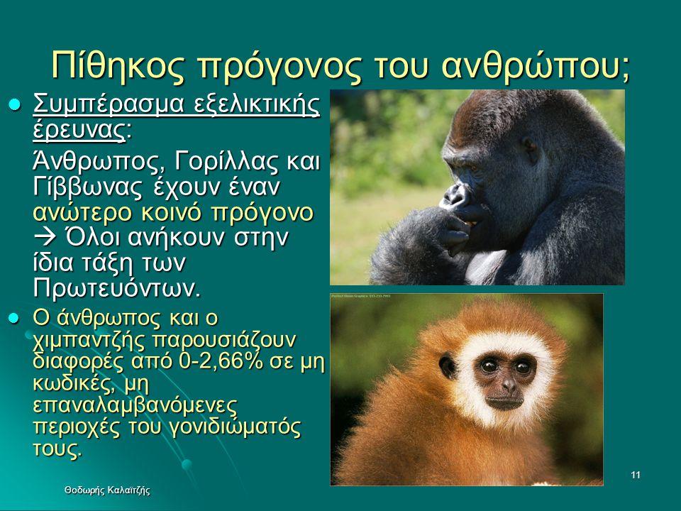 Πίθηκος πρόγονος του ανθρώπου;