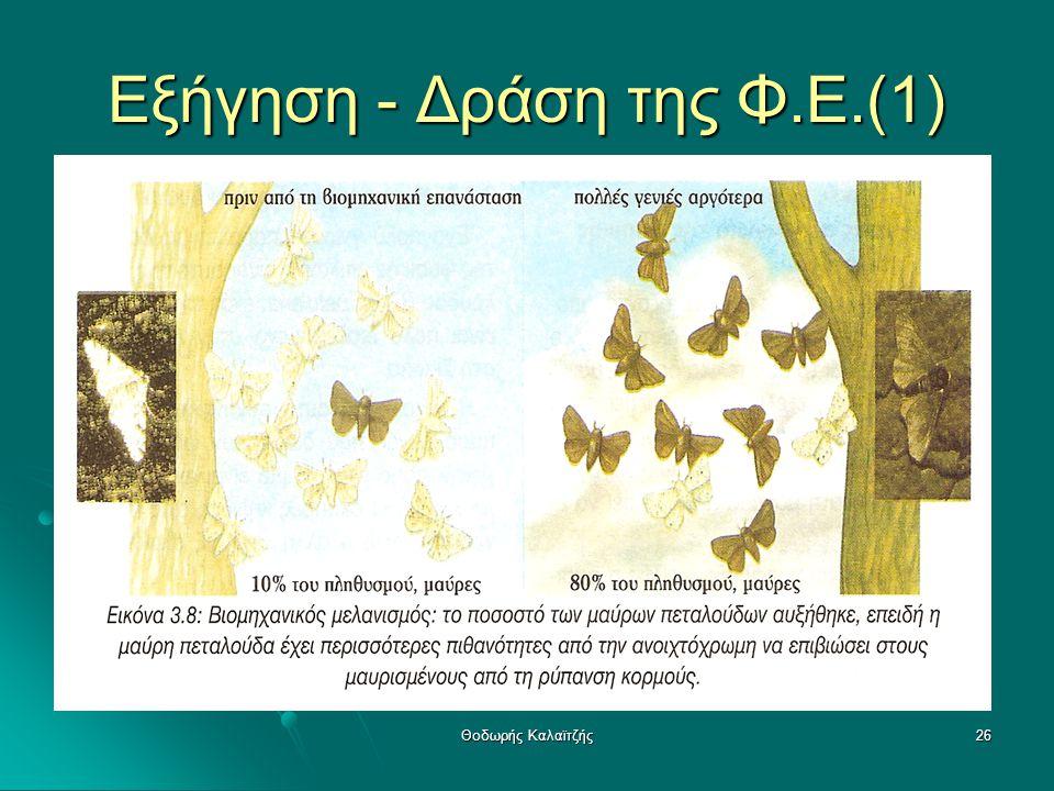 Εξήγηση - Δράση της Φ.Ε.(1)