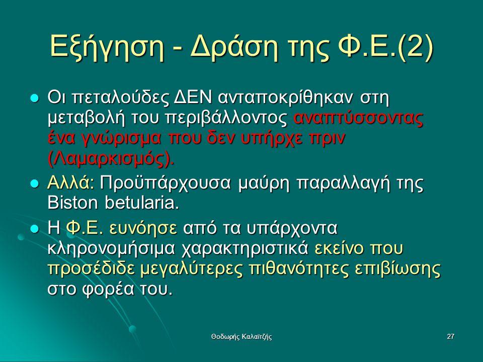 Εξήγηση - Δράση της Φ.Ε.(2)