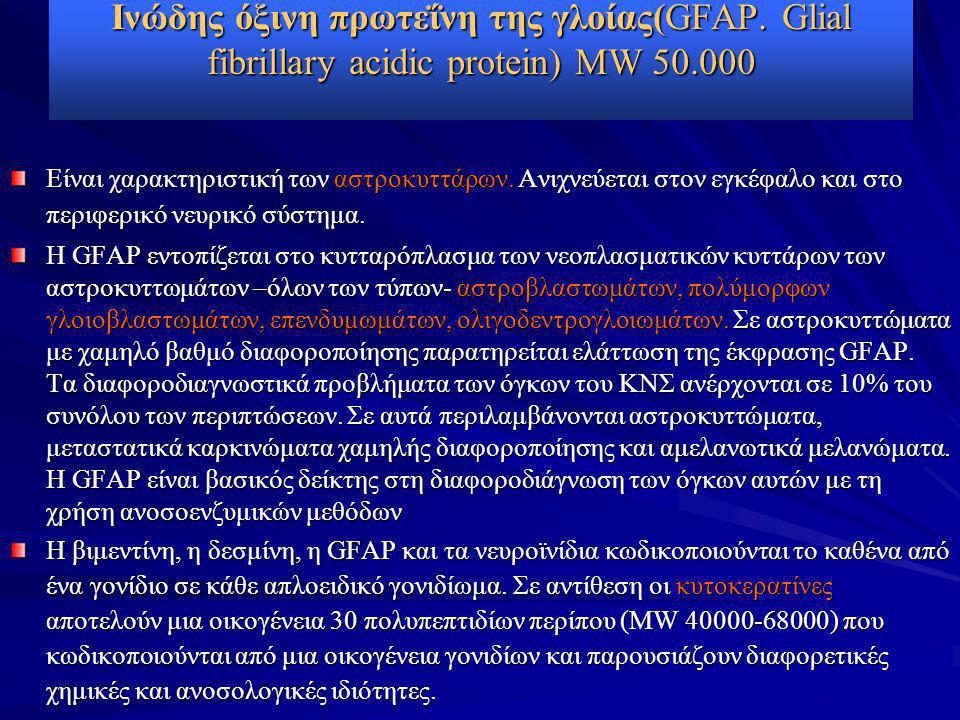 Ινώδης όξινη πρωτεΐνη της γλοίας(GFAP