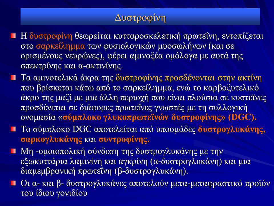 Δυστροφίνη