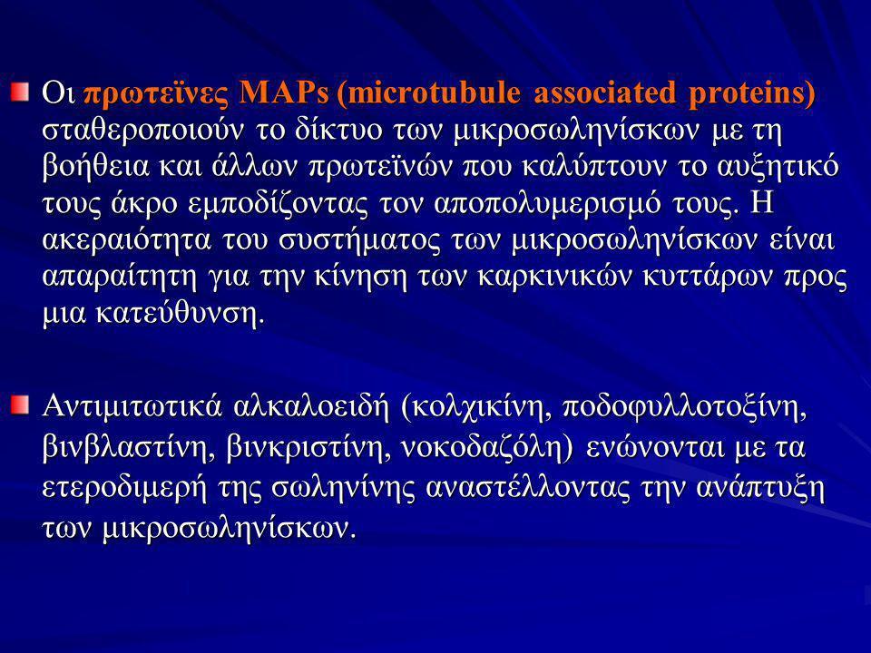 Οι πρωτεϊνες MAPs (microtubule associated proteins) σταθεροποιούν το δίκτυο των μικροσωληνίσκων με τη βοήθεια και άλλων πρωτεϊνών που καλύπτουν το αυξητικό τους άκρο εμποδίζοντας τον αποπολυμερισμό τους. Η ακεραιότητα του συστήματος των μικροσωληνίσκων είναι απαραίτητη για την κίνηση των καρκινικών κυττάρων προς μια κατεύθυνση.