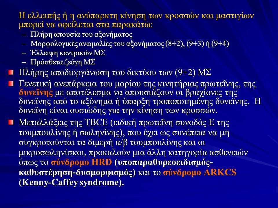 Πλήρης αποδιοργάνωση του δικτύου των (9+2) ΜΣ