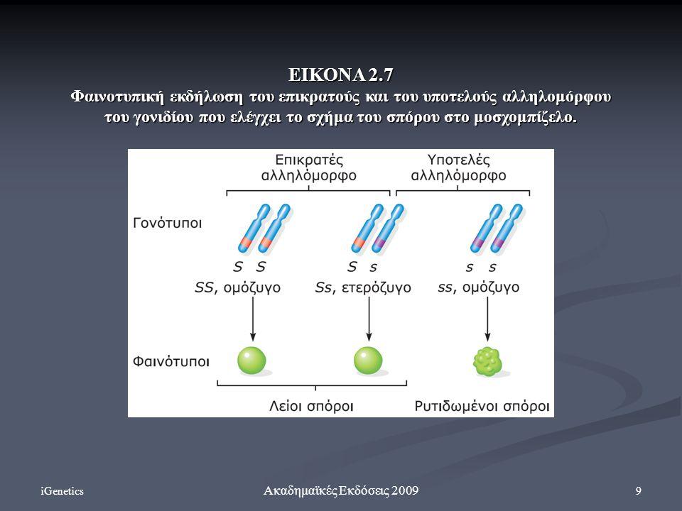 ΕΙΚΟΝΑ 2.7 Φαινοτυπική εκδήλωση του επικρατούς και του υποτελούς αλληλομόρφου του γονιδίου που ελέγχει το σχήμα του σπόρου στο μοσχομπίζελο.