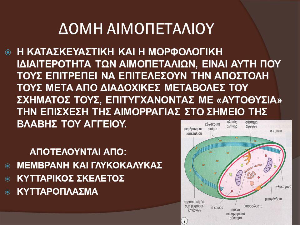 ΔΟΜΗ ΑΙΜΟΠΕΤΑΛΙΟΥ