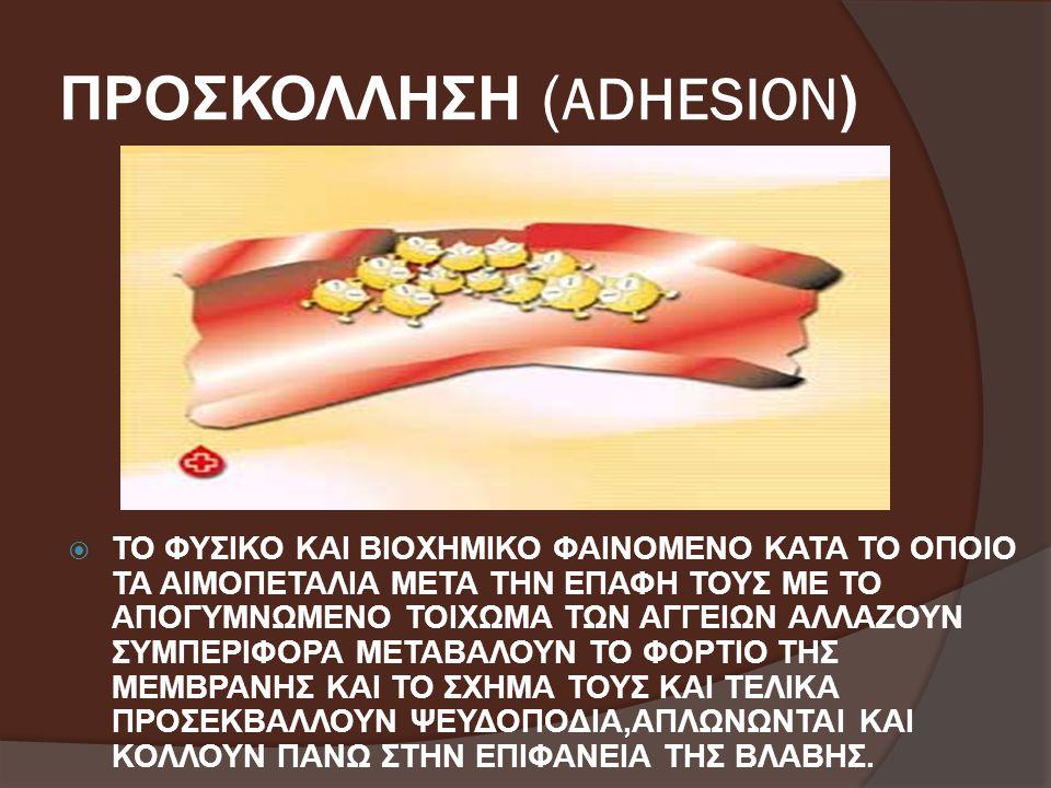 ΠΡΟΣΚΟΛΛΗΣΗ (ADHESION)