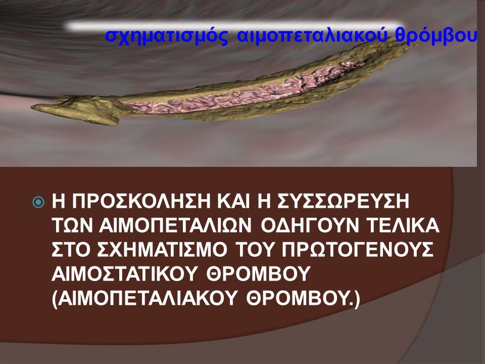 σχηματισμός αιμοπεταλιακού θρόμβου