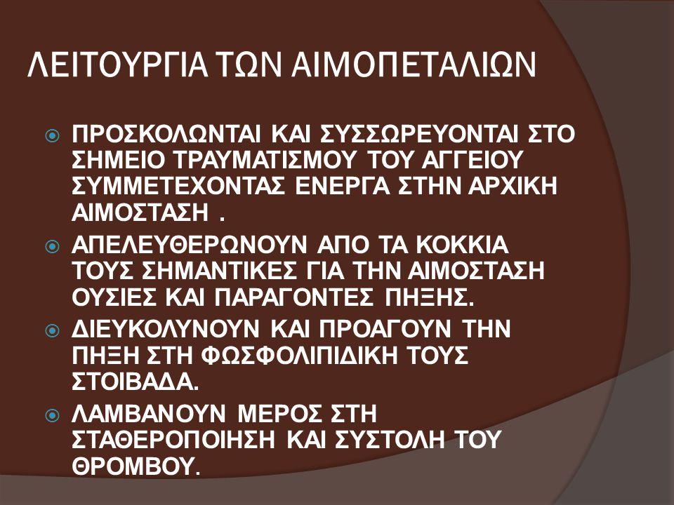 ΛΕΙΤΟΥΡΓΙΑ ΤΩΝ ΑΙΜΟΠΕΤΑΛΙΩΝ
