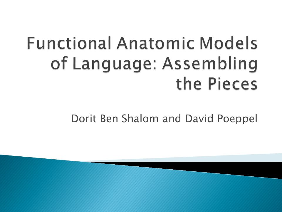 Functional Anatomic Models of Language: Assembling the Pieces
