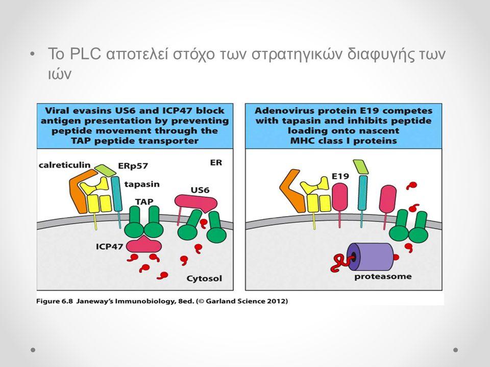 Το PLC αποτελεί στόχο των στρατηγικών διαφυγής των ιών