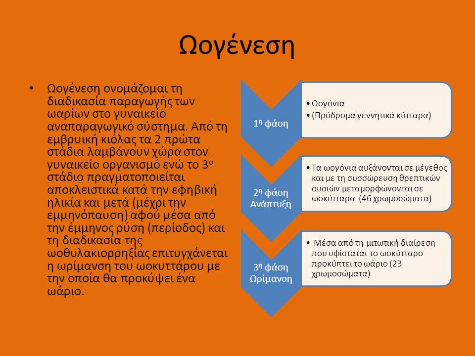 Ωογένεση