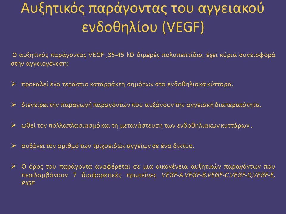 Αυξητικός παράγοντας του αγγειακού ενδοθηλίου (VEGF)