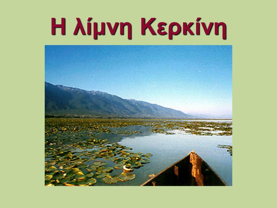 Η λίμνη Κερκίνη
