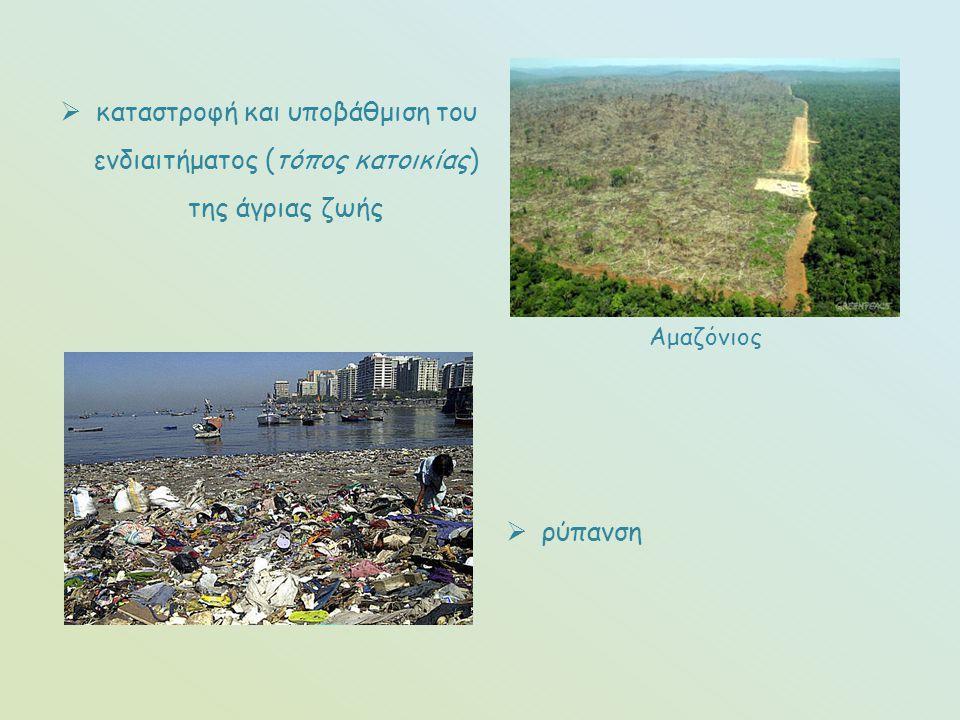 καταστροφή και υποβάθμιση του ενδιαιτήματος (τόπος κατοικίας) της άγριας ζωής