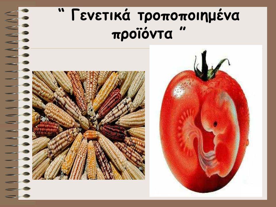 Γενετικά τροποποιημένα προϊόντα