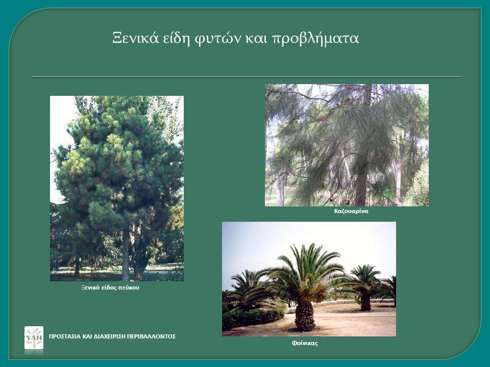 Ξενικά είδη φυτών και προβλήματα
