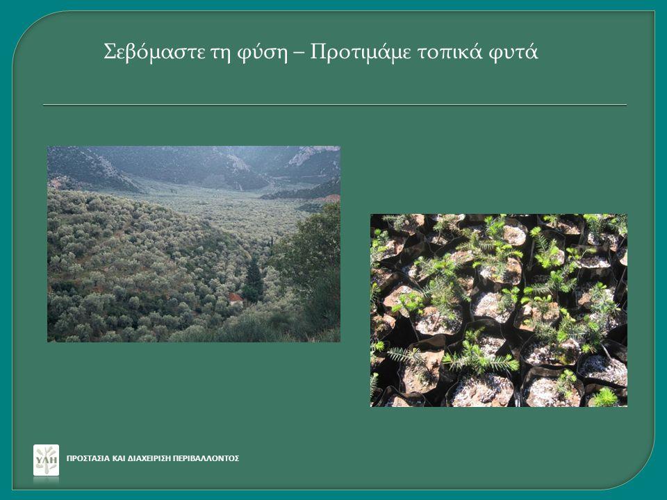 Σεβόμαστε τη φύση – Προτιμάμε τοπικά φυτά