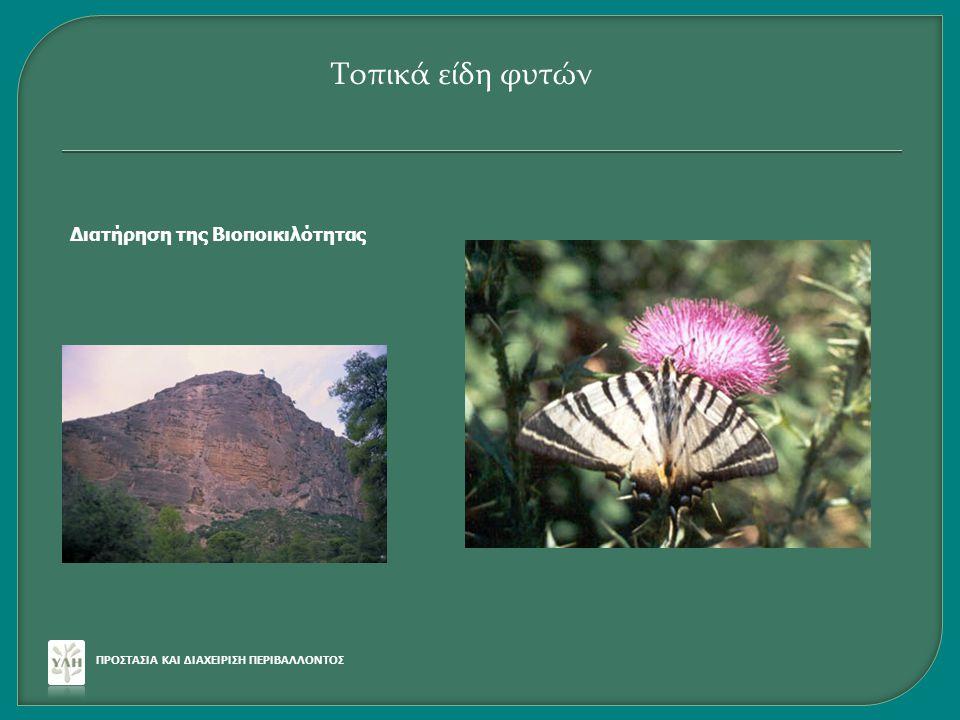 Τοπικά είδη φυτών Διατήρηση της Βιοποικιλότητας