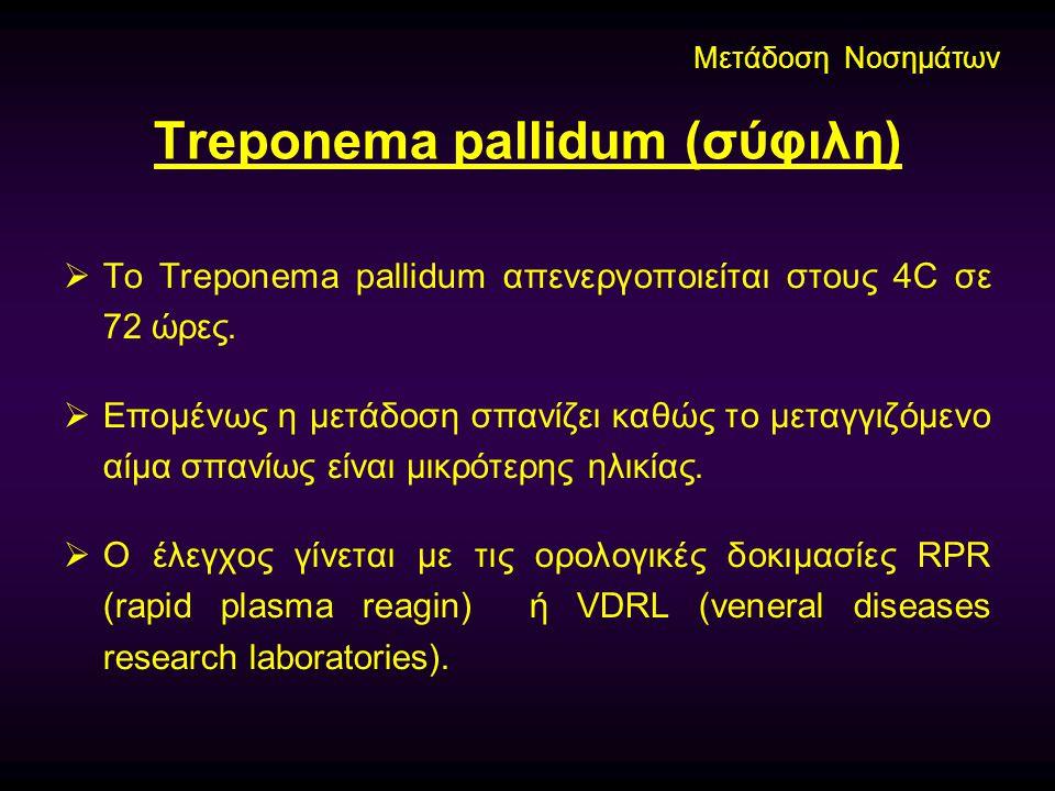 Treponema pallidum (σύφιλη)