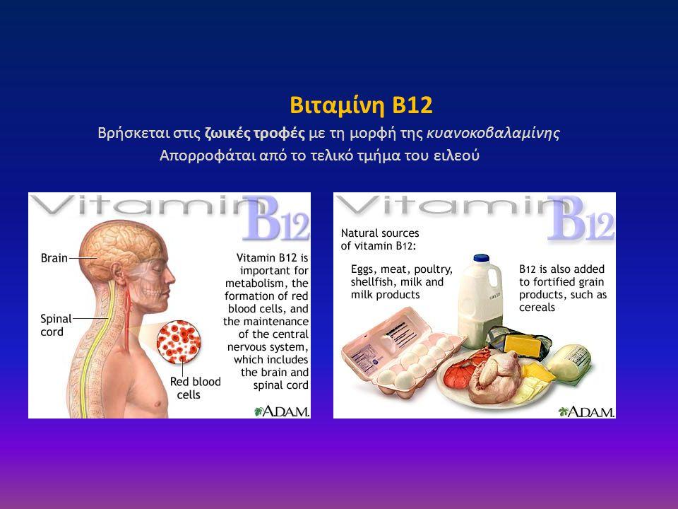 Βιταμίνη B12 Βρήσκεται στις ζωικές τροφές με τη μορφή της κυανοκοβαλαμίνης.