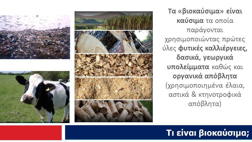Τα «βιοκαύσιμα» είναι καύσιμα τα οποία παράγονται χρησιμοποιώντας πρώτες ύλες φυτικές καλλιέργειες, δασικά, γεωργικά υπολείμματα καθώς και οργανικά απόβλητα (χρησιμοποιημένα έλαια, αστικά & κτηνοτροφικά απόβλητα)