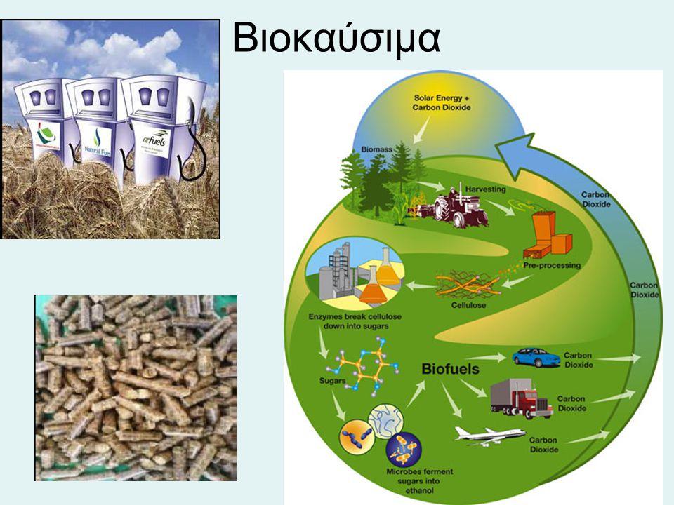 Βιοκαύσιμα