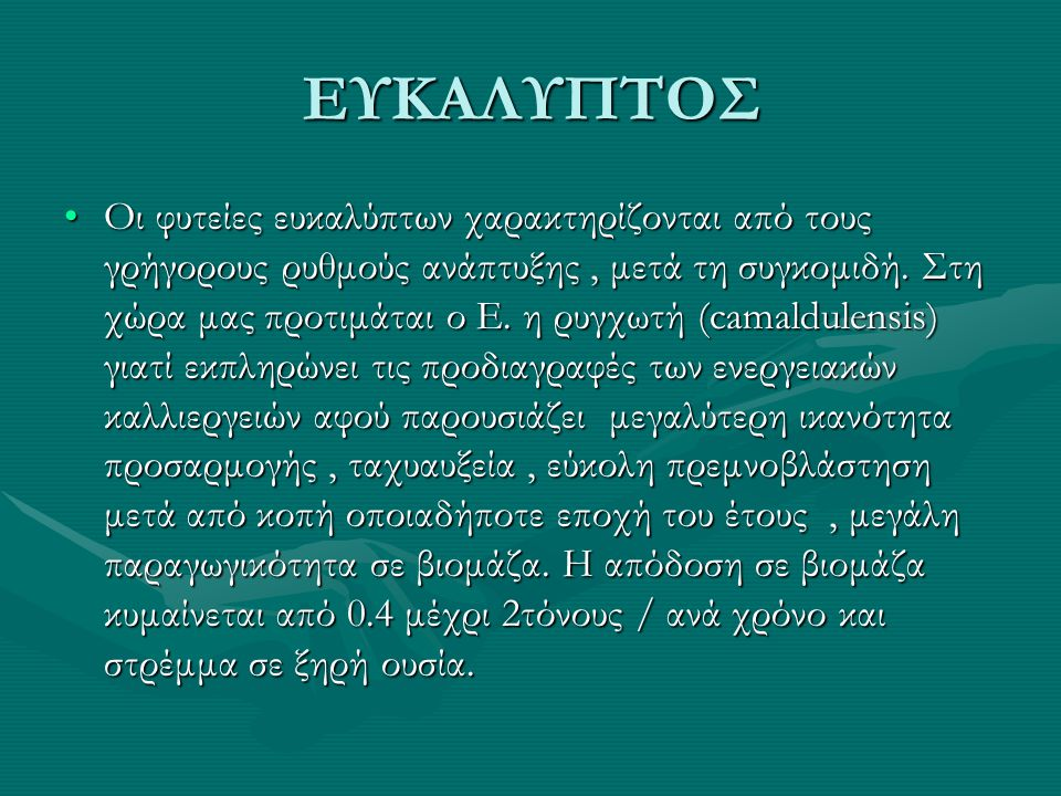 ΕΥΚΑΛΥΠΤΟΣ