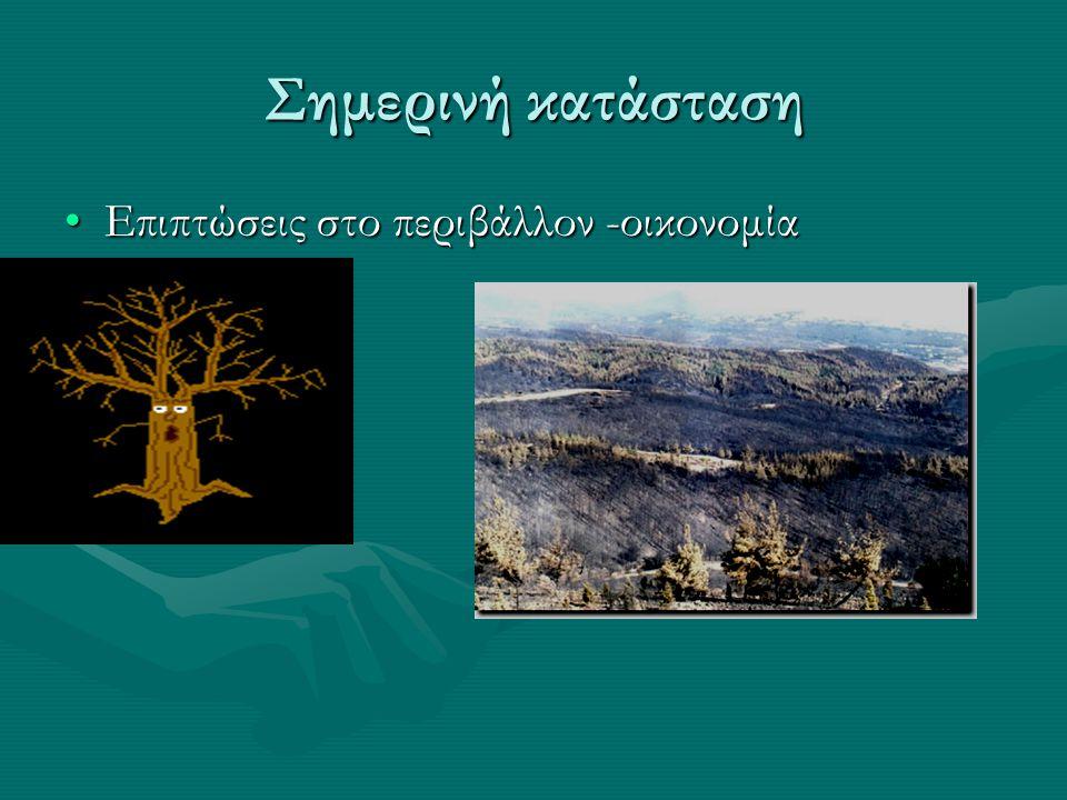 Σημερινή κατάσταση Επιπτώσεις στο περιβάλλον -οικονομία