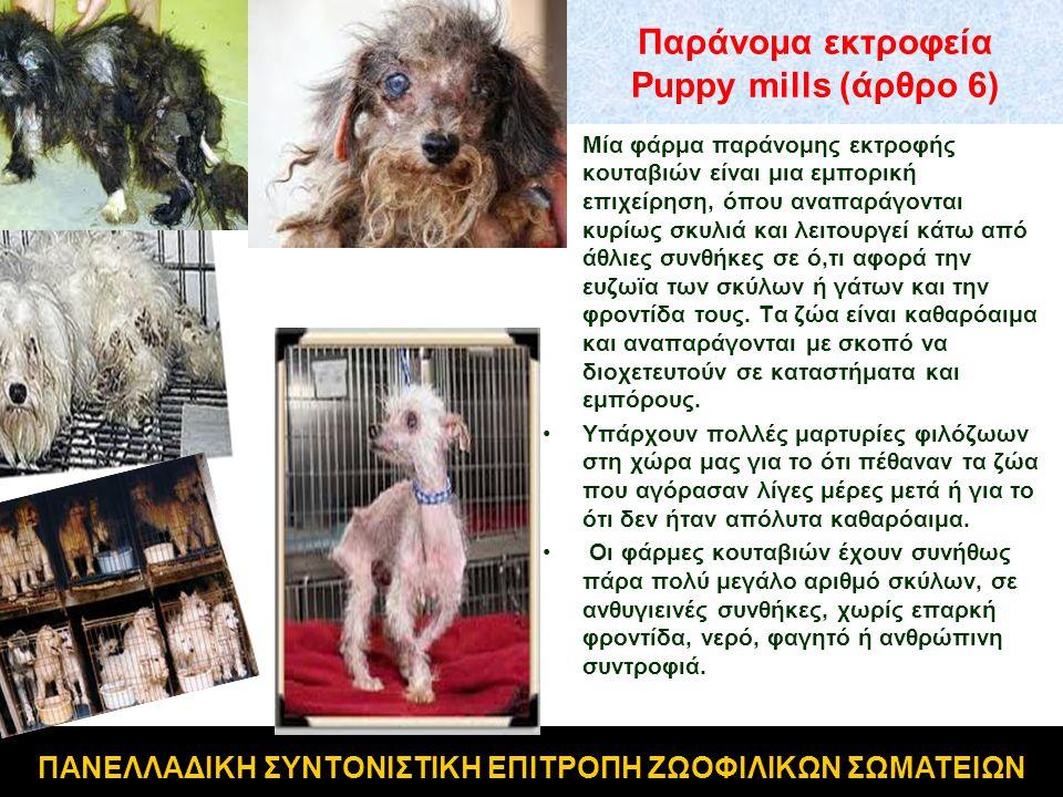 Παράνομα εκτροφεία Puppy mills (άρθρο 6)