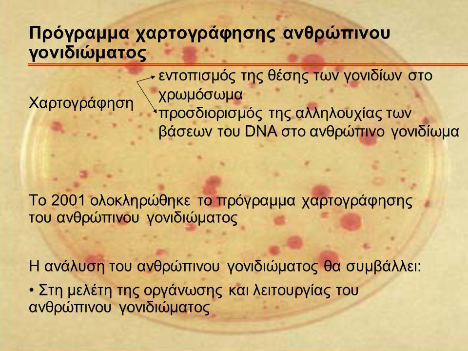 Πρόγραμμα χαρτογράφησης ανθρώπινου γονιδιώματος