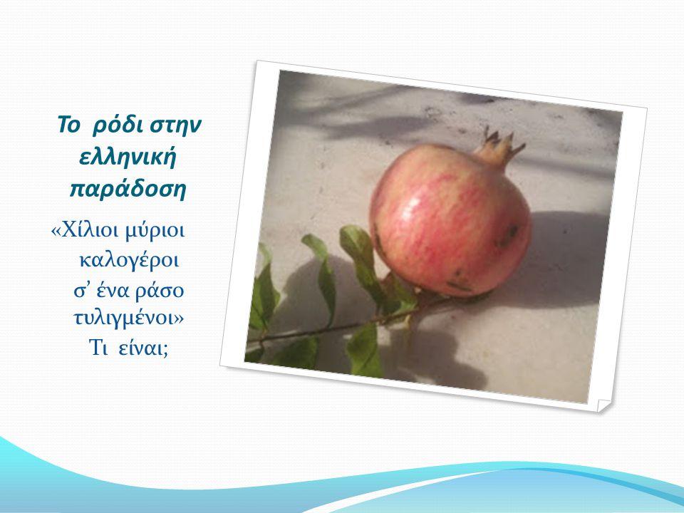 Το ρόδι στην ελληνική παράδοση