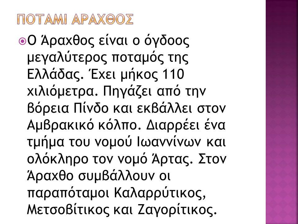 ΠΟΤΑΜΙ ΑΡΑΧΘΟΣ